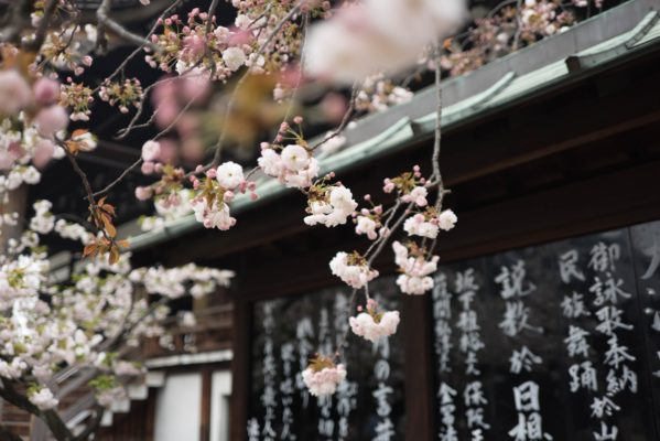 Naikan- Recunostinta, stare de gratie si arta japoneza a introspectiei